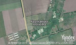 Satellite map of  village Kashkarivka
